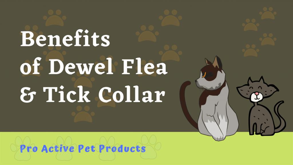 Benefits of Dewel Flea & Tick Collar