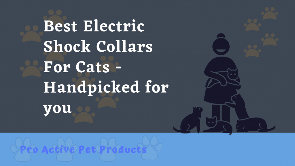 Best Electric Shock Collars For Cats - Handpicked for you