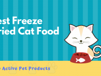 Best Freeze Dried Cat Food