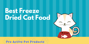 Best Freeze Dried Cat Food