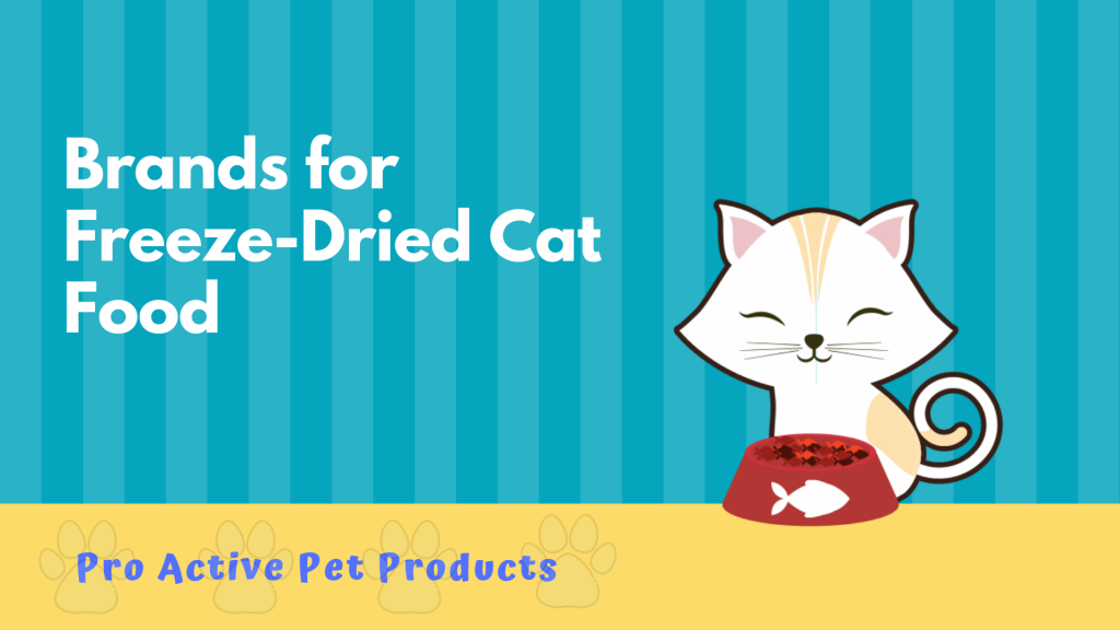 Brands for Freeze-Dried Cat Food