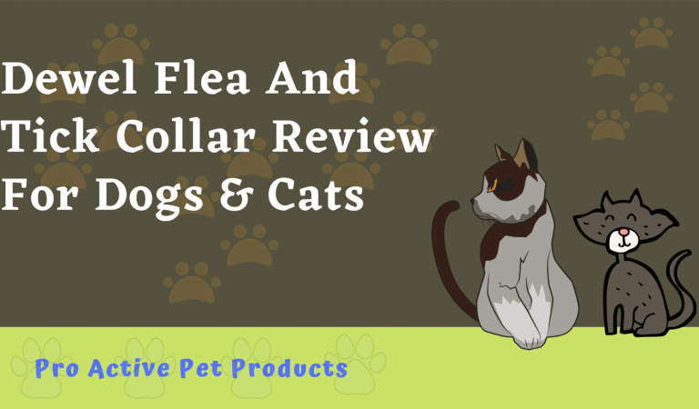 Dewel Flea And Tick Collar Reviews For Dogs & Cats