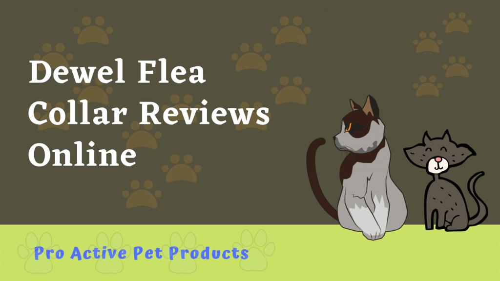 Dewel Flea Collar Reviews Online