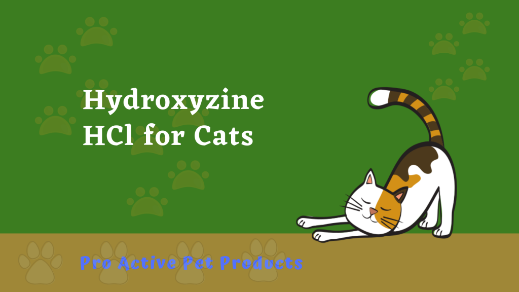 Hydroxyzine HCl for Cats