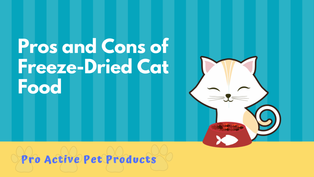 Pros and Cons of Freeze-Dried Cat Food