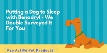 Putting a Dog to Sleep with Benadryl - We Double Surveyed It For You