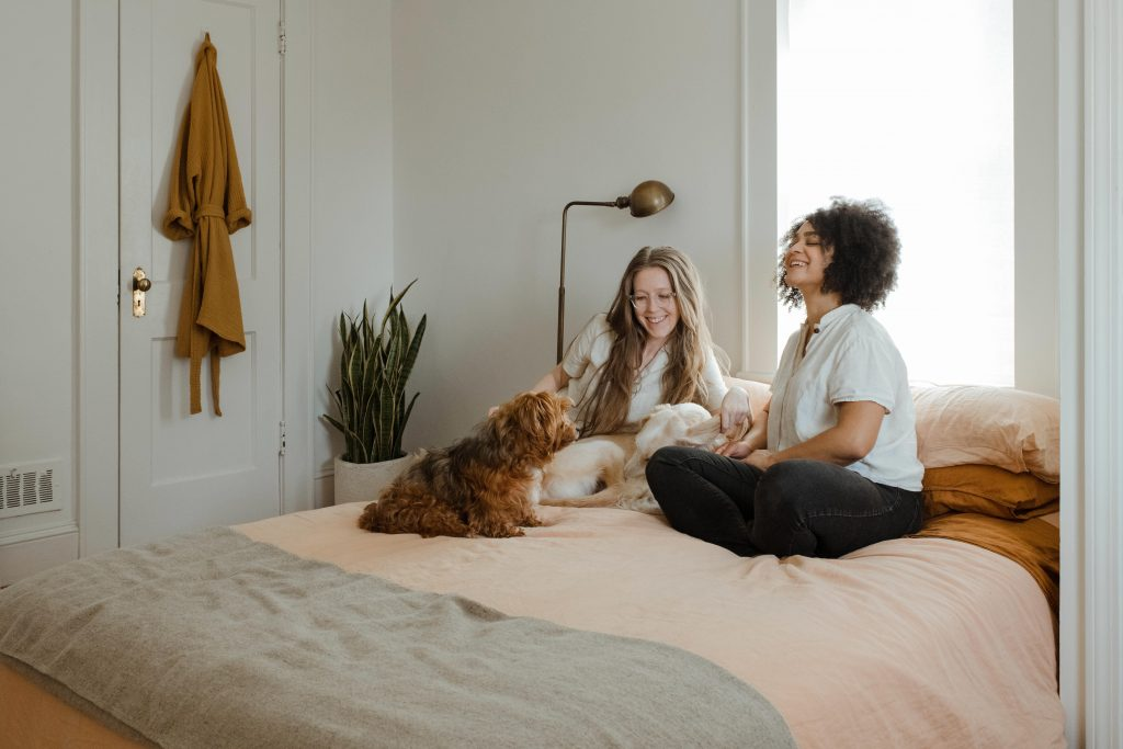 dog in bed with 2 females