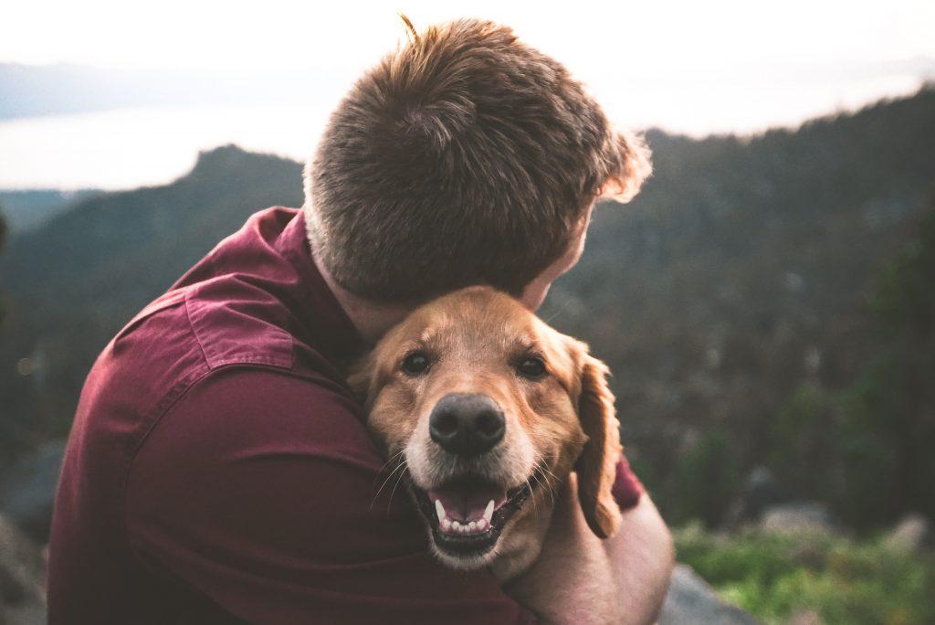 owner hugging his dog