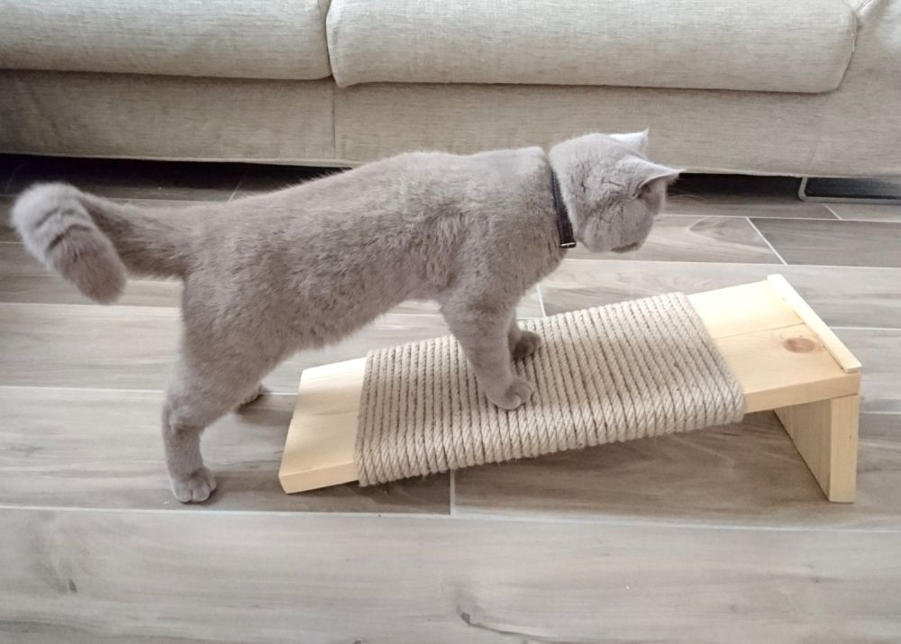 Cat Scratcher Wooden