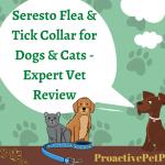 Seresto Flea & Tick Collar for Dogs & Cats - Expert Vet Review