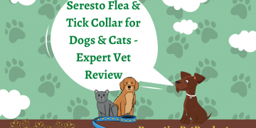 Seresto Flea & Tick Collar for Dogs & Cats - Expert Vet Review