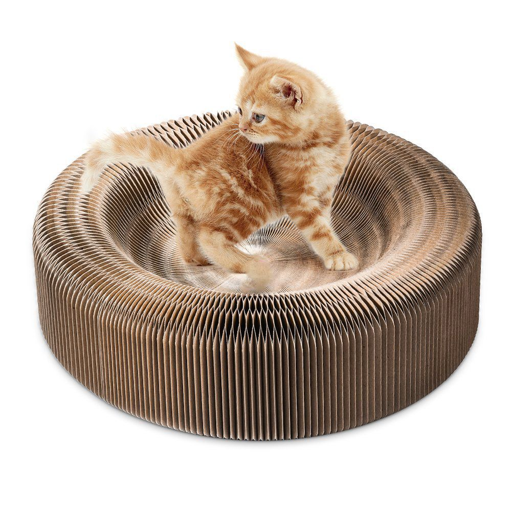scratcher for cat