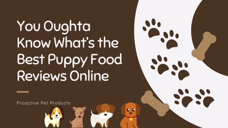 You Oughta Know What's the Best Puppy Food Reviews Online