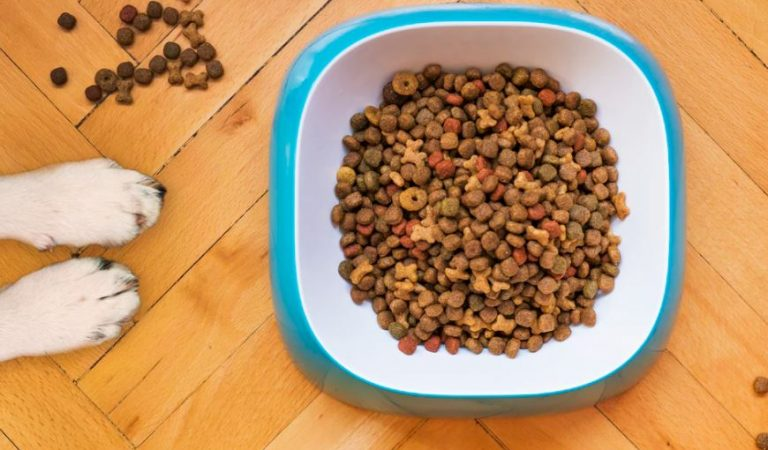 How to correctly read the label of dog food?