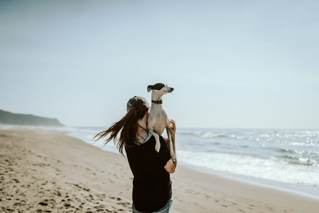 owner and dog to the beach