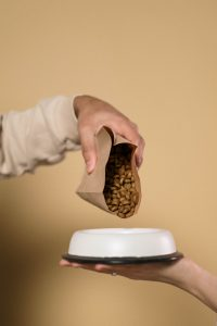 pouring dog food